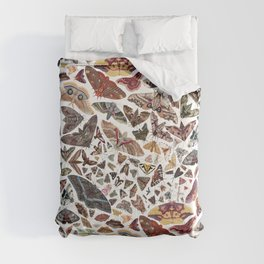 Moths of North America Pattern Comforters