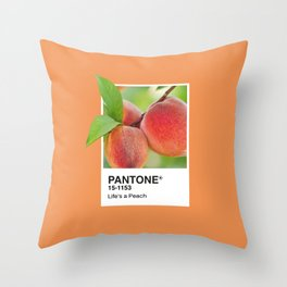 PANTONE SERIES – PEACH Throw Pillow