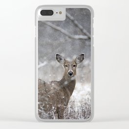 Softly Clear iPhone Case