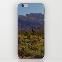 Painted Desert - IV iPhone Skin