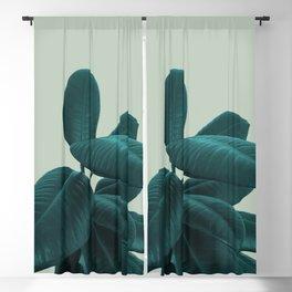 Ficus Elastica #8 #GreenLily #decor #art #society6 Blackout Curtain