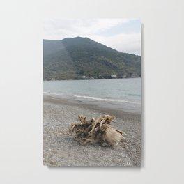Log. Metal Print