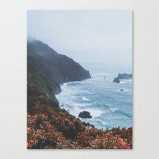 New Zealand IV Canvas Print