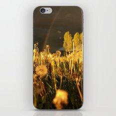Rainbow Thunderstorm Sunset Through a Field of Dandelions iPhone & iPod Skin
