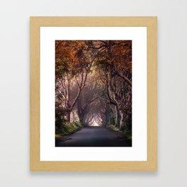 Autumn alley in Northern Ireland Framed Art Print