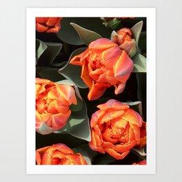 Tulips on fire Art Print