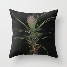 Mackenzie Throw Pillow