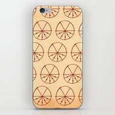 Circle Sections iPhone & iPod Skin