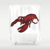 lobster Shower Curtains featuring Lobster by Keith Cowan