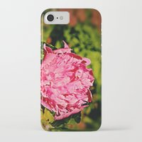 peony iPhone & iPod Cases featuring Peony by Svetlana Korneliuk