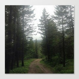 The Path is Made by Walking Canvas Print