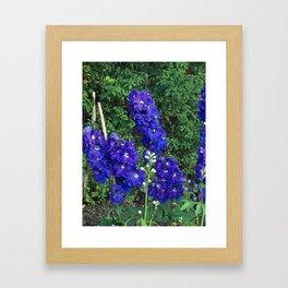 floral mirage Framed Art Print