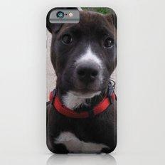 Cheka iPhone 6s Slim Case