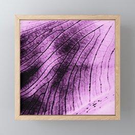Leaf veins Framed Mini Art Print