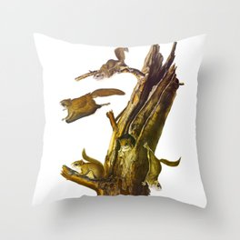 Flying Squirrel Vintage Hand Drawn Illustration Throw Pillow