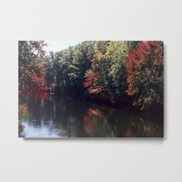 Fall Foliage #5 Metal Print