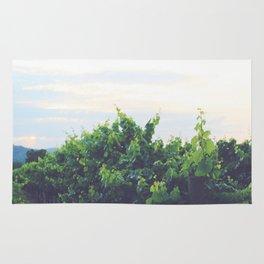 Dusty Vineyard Rug