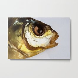 Dried Smoked Fish Head Metal Print