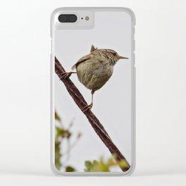 Wren Songbird Bird on Rusty Wire (Troglodytes) Clear iPhone Case