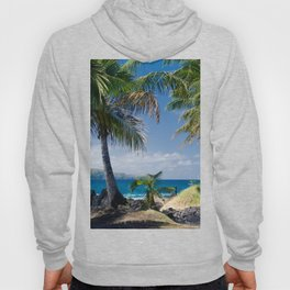 Welcome to Paradise Hoody