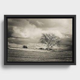 Solitude Framed Canvas