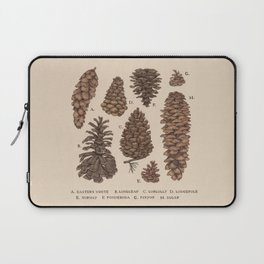 Pinecones Laptop Sleeve