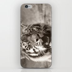 Tiger Cub 1 iPhone & iPod Skin