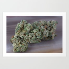 Dr. Who Medicinal Medical Marijuana Art Print