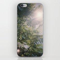 Flared Green iPhone & iPod Skin