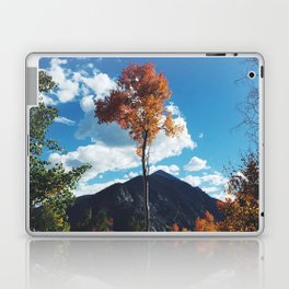 Fall Change Laptop & iPad Skin