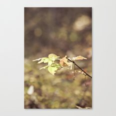 Autumn Child Canvas Print
