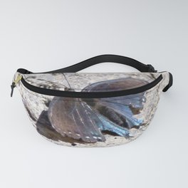 Watercolor Butterfly, Pipevine Swallowtail Butterfly 01, Ventana Canyon, Arizona Fanny Pack