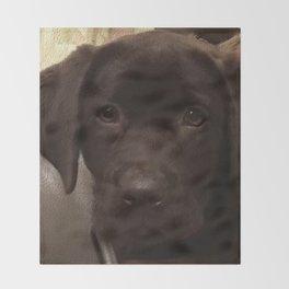 Cute Lab Puppy Throw Blanket