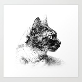 Profile of Stella the Grey (Cat) Art Print