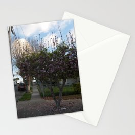 Pink Magnolia Stationery Cards