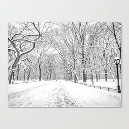 New York City Snow Canvas Print