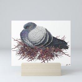 Rock Pigeon Mini Art Print