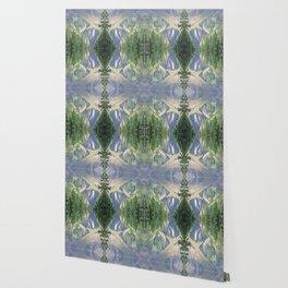 SWIFT CREEK HEADWATERS BELOW TABLE MOUNTAIN Wallpaper