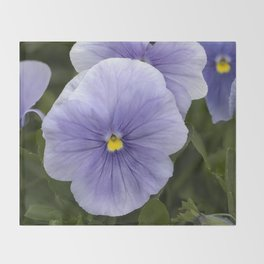 Pansy Mauve Throw Blanket