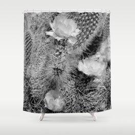 Hedgehog Cactus In Bloom II - Black and White Shower Curtain