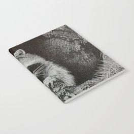 lil bandit Notebook