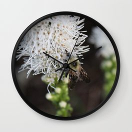 Bee Collecting Pollen 2 Wall Clock