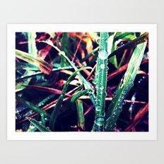 Droplets on Grass Art Print