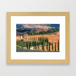 Cypress trees and meadow Framed Art Print