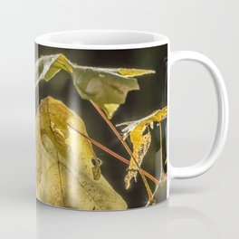 Touched by Light Coffee Mug