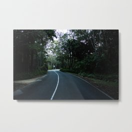 Road Into the Gardens Metal Print