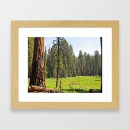 Huckleberry Meadow Framed Art Print