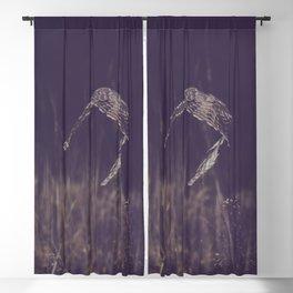 Night Flight Blackout Curtain