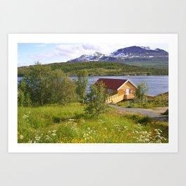 house on a fjord Art Print