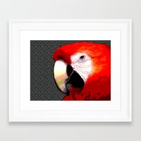 parrot Framed Art Prints featuring Parrot by Whimsy Notions Designs